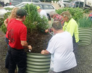 People planting plants in the sensory garden